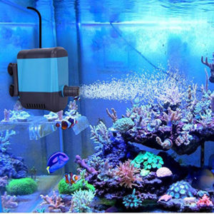 aquarium water sump pump reviews