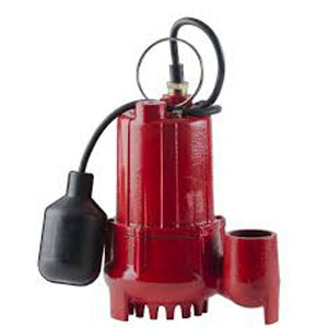 red lion rl-sc50t sump pump with tethered float switch, cast iron